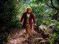 The Hobbit - the-hobbit photo