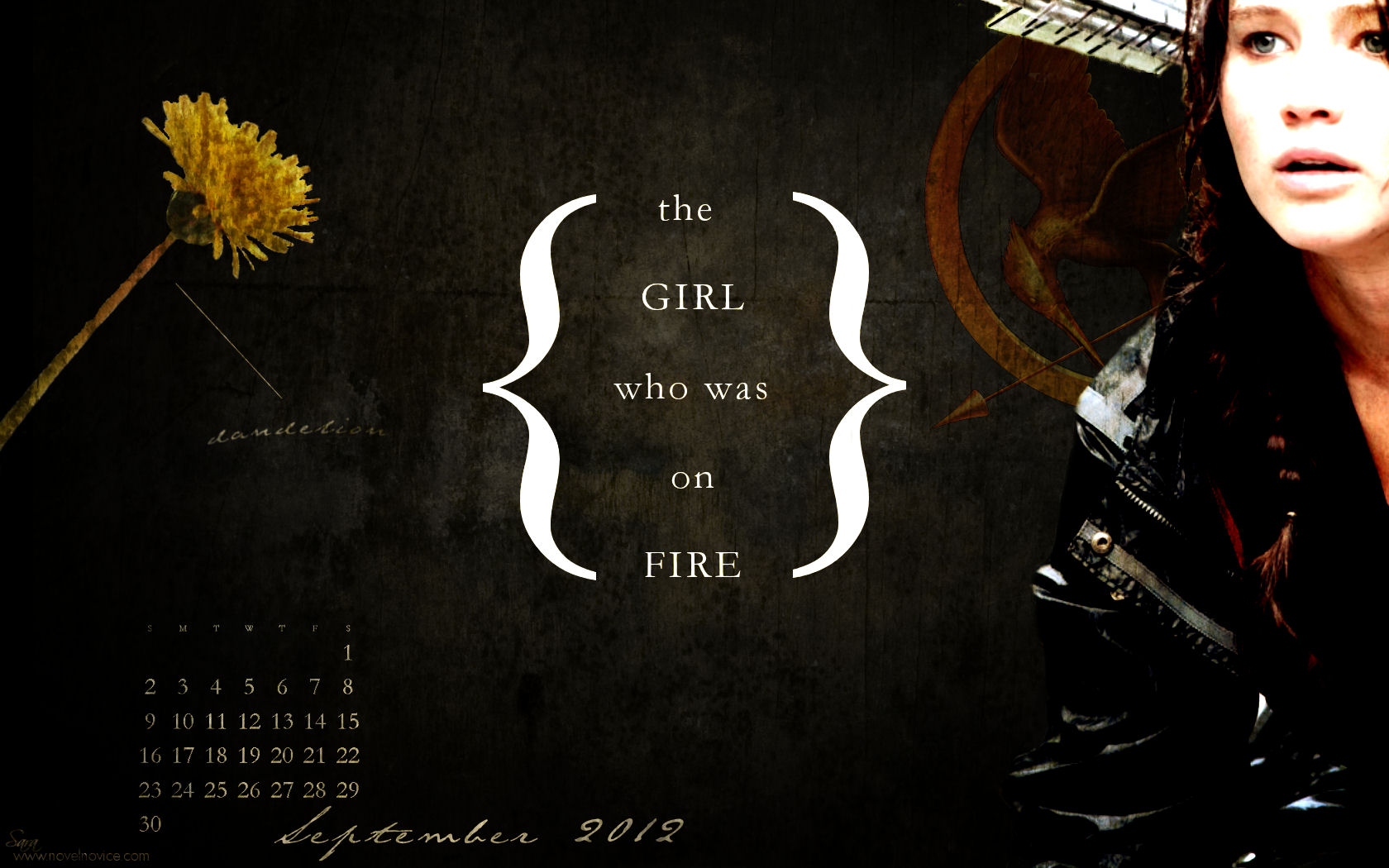 The Hunger Games images The Hunger Games Wallpapers HD wallpaper and background photos