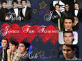 Wallpaper designed by me *Eloisa*JoBros - the-jonas-brothers wallpaper