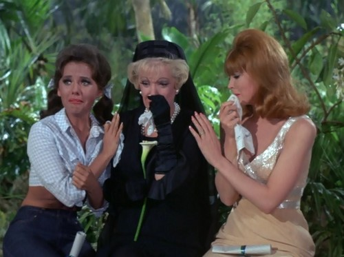 Gilligan's Island images Where There's a Will HD wallpaper ...