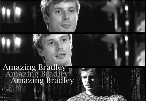 amazing bradley