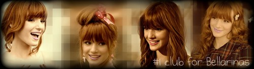 banner suggestions..! - bella-thorne-official-fan-club Photo