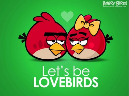 luv birds - angry-birds Photo