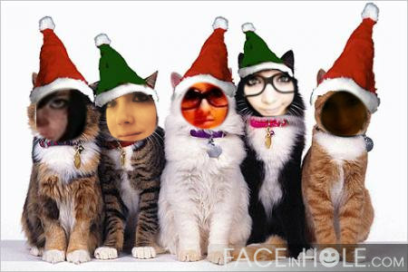 Friends xoxo wallpaper titled meow xD