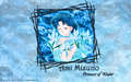 sailor-mercury - Amy wallpaper