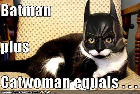 Batman+catwoman is equal to