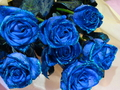 Blue mga rosas for my Fairy Sister♥