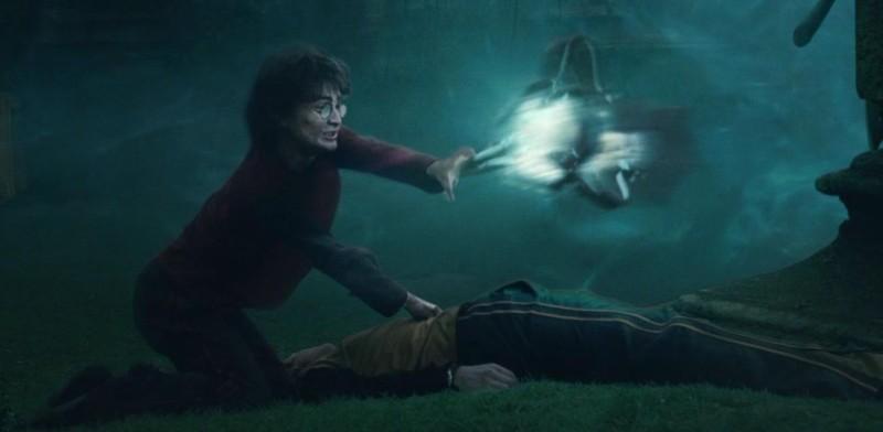 Cedric and Harry
