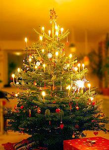 क्रिस्मस पेड़