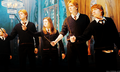 Dumbeldore's Army - dumbledores-army photo