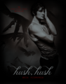 Ed Westwick as Patch - hush-hush photo
