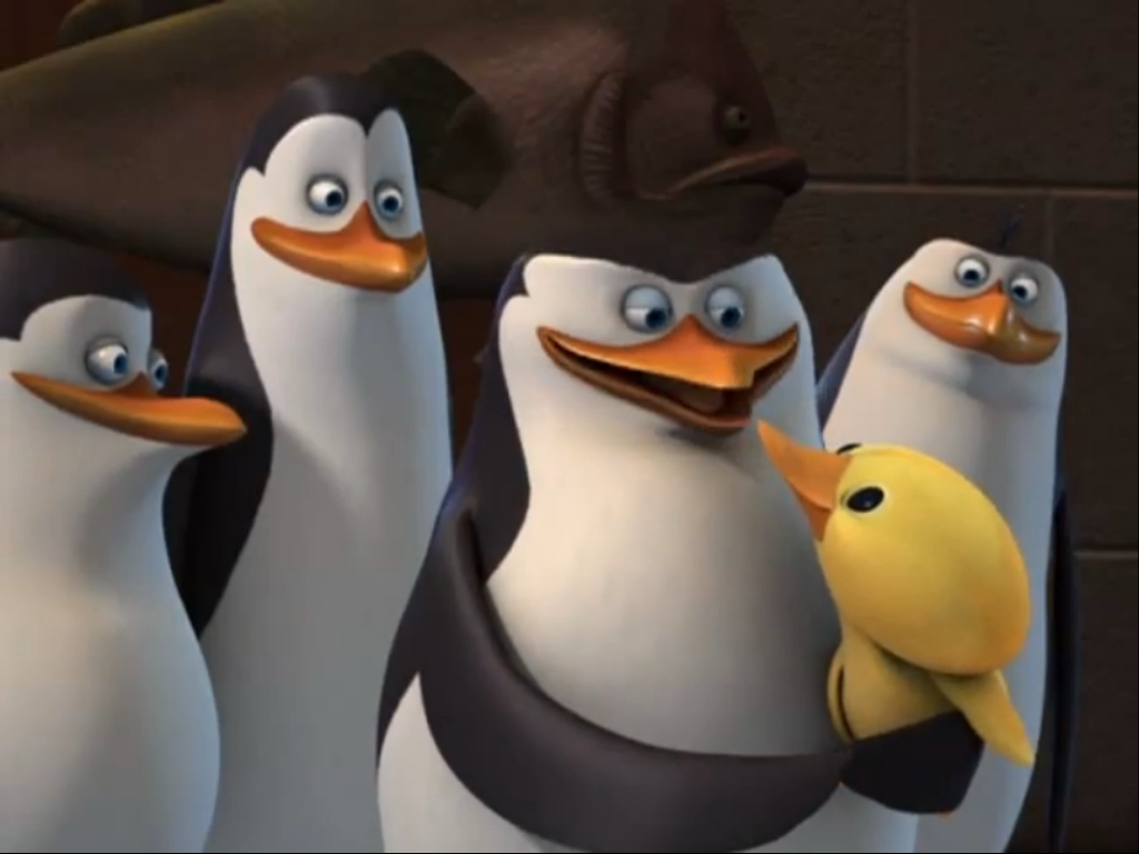 eggy from the penguins of madagascar images eggy pictures! hd