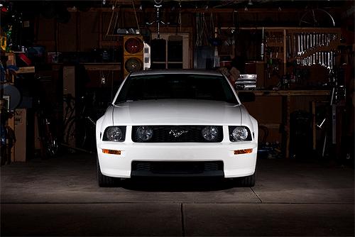 Ford giống ngựa rừng ở mể tây cơ, mustang ;)