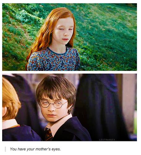 HP funnies