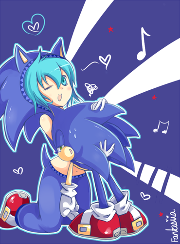 Hedgehog Diva