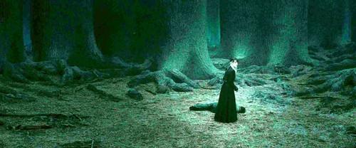 Narcissa Malfoy and Harry Potter