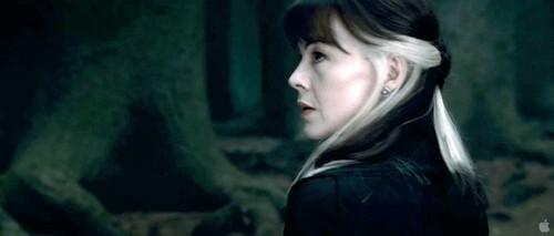http://images5.fanpop.com/image/photos/28100000/Narcissa-Malfoy-narcissa-malfoy-28196617-500-213.jpg