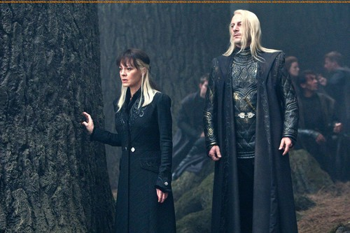 Narcissa and Lucius
