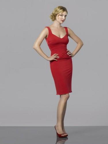 New Cast Promotional 写真 - Emily VanCamp