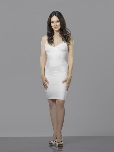 Revenge wallpaper probably containing a cocktail dress and a chemise entitled New Cast Promotional Photos - Madeleine Stowe