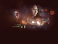 Peeta and Katniss Everdeen - peeta-mellark wallpaper