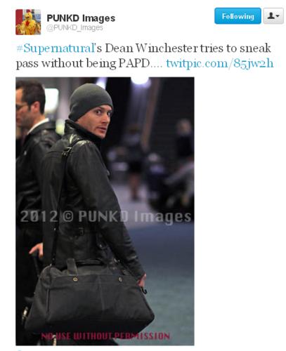 SPN | Jensen