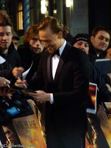 Tom Hiddleston - War Horse UK Premiere