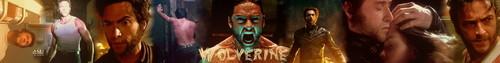 Wolverine Banner