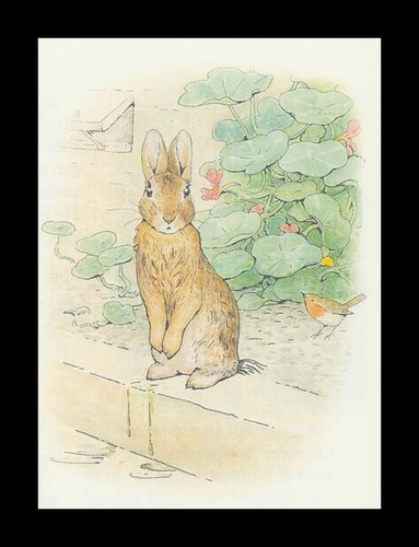 benjamin bunny peter rabbit