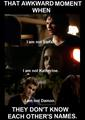 funny GG/TVD