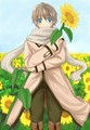 ivan-sunflower - hetalia-russia%E2%9D%A6 photo
