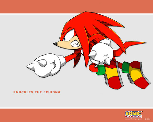 knuckles - knuckles-the-echidna Photo