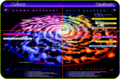 Star map the Milky Way Galaxy[ Alpha, Beta, Gamma, Delta, Quadrant ] - star-trek photo
