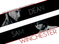 ☆ Supernatural ☆  - television wallpaper