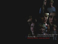 american-horror-story - Tate & Violet wallpaper