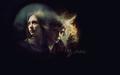 Tate & 제비꽃, 바이올렛