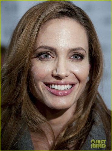Angelina Jolie & Brad Pitt: 'Blood & Honey' DC Premiere!