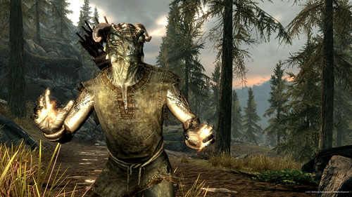Elder Scrolls V : Skyrim wallpaper probably with a fountain entitled Argonian Male