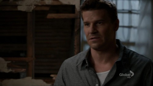 Booth und Bones Hintergrund called Booth&Bones - 7x06 - The Crack in the Code
