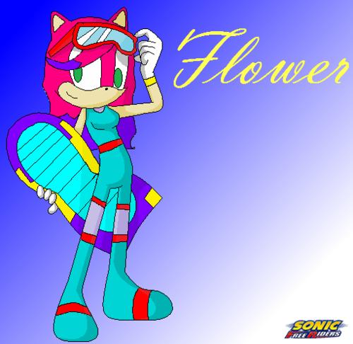 bunga Riders