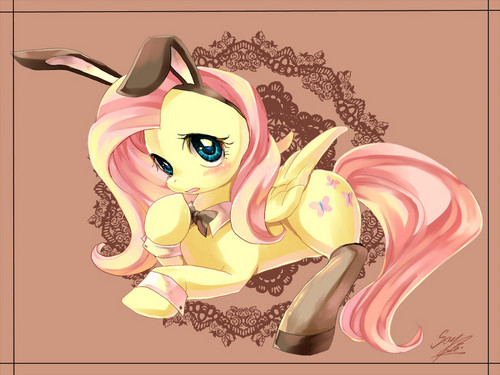 Fluttershy the bunny