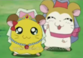 Hamtaro screenshots - hamtaro screencap