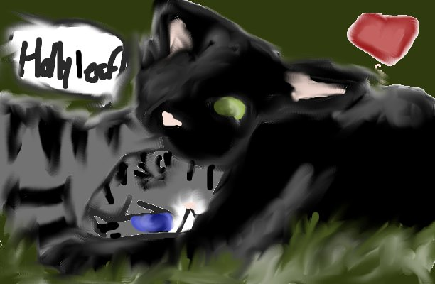 Warriors Novel Series Images Hollyleaf And Jayfeather Wallpaper Background Photos