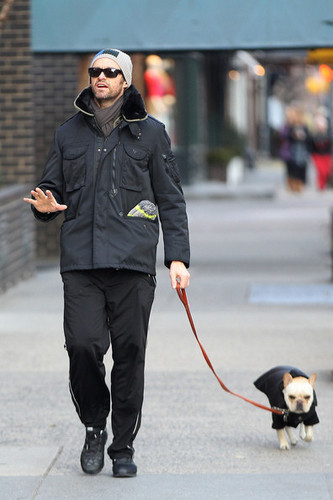 Hugh Jackman and Ava Out Walking the Dog