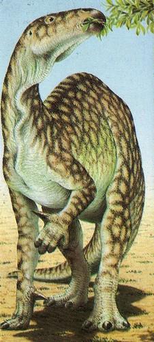 Iguanodon