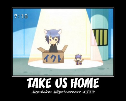 Ikuto says take us home. :3