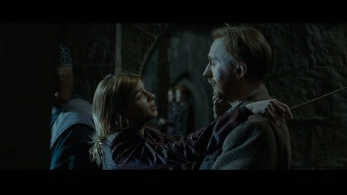 """Remus Lupin Hintergrund possibly containing a Fernsehen receiver and a sign called Lupin in Deathly Hallows pt 2 - Deleted Scene - """"Hogwarts Battlements"""""""