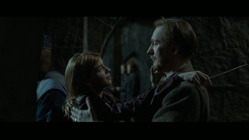 "Remus Lupin Hintergrund probably containing a portrait called Lupin in Deathly Hallows pt 2 - Deleted Scene - ""Hogwarts Battlements"""