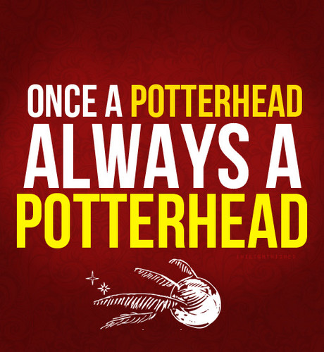 Once A PotterHead, Always A PotterHead
