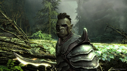 Elder Scrolls V : Skyrim wallpaper with a totem pole entitled Orc